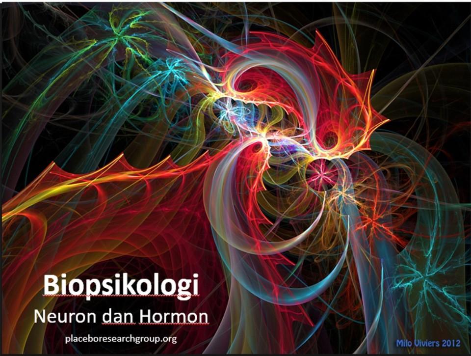 biopsi-10-neuron-dan-hormon