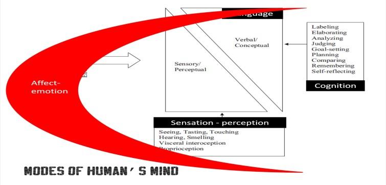 biopsi-11-13_sensasi-persepsi-emosi-afek-kognisi
