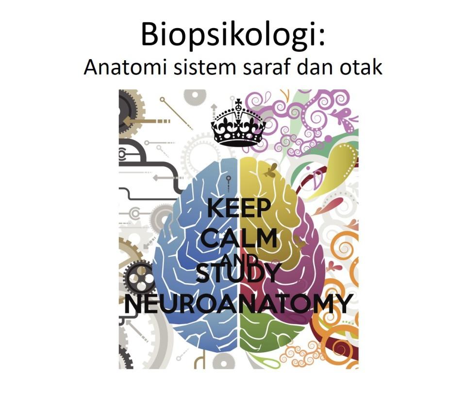biopsi-456